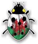 Ladybird Bug Design With Wales Welsh CYMRU Flag Motif External Vinyl Car Sticker 90x105mm